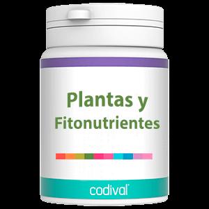 comprar productos dieteticos plantas fitonutrientes