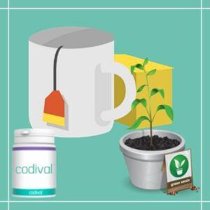 infusiones-depurativas detox para limpiar organismo
