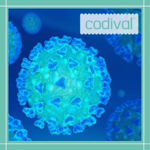 que es el coronavirus