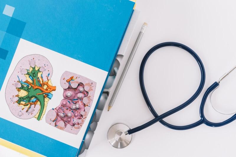 medicina natural riñones